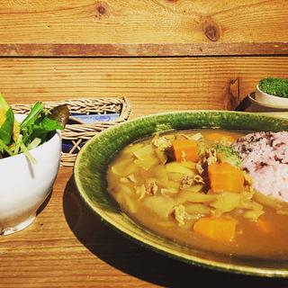ごぼうと牛肉カレー2.JPG