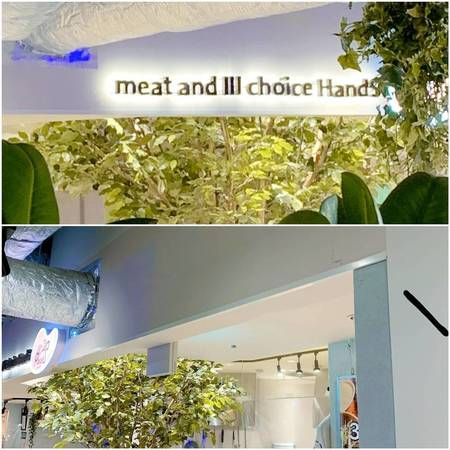 Meat and 3choice HandS