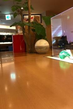 カフェ北欧館木の色